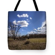 Summer Sky In The Fall Tote Bag