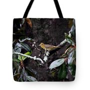 Summer Tanager Lady Tote Bag