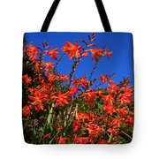 Montbretia, Summer Wildflowers Tote Bag