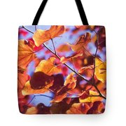 Summers Palette Tote Bag