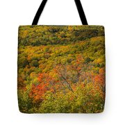 Summit Peak Autumn 6 Tote Bag