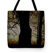 Sun - Sunrise - Breaking Dawn Tote Bag