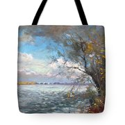 Sun After Storm Tote Bag by Ylli Haruni