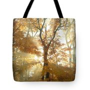 Sun Breaking Through Trees Tote Bag