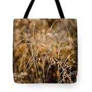 Sun Catcher Tote Bag