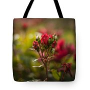Sun In The Garden Tote Bag