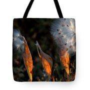 Sun Kisses Milkweeds Tote Bag