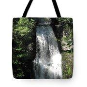 Sun On The Bushkill Falls  Tote Bag