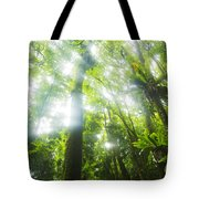 Sun Rays Through Rainforest Trees Tote Bag