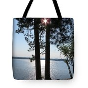 Sun Shining Through Trees Tote Bag