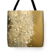 Sun Sparkled Dandy Tote Bag