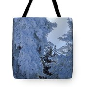 Sunburst In Yellowstone Tote Bag
