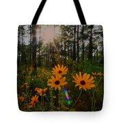 Sunburst On Sunflowers Tote Bag