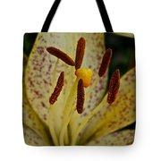 Suncrest Tote Bag