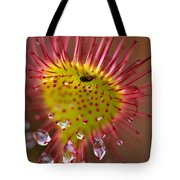 Sundew With Digested Food, British Tote Bag