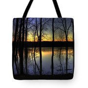 Sundown Mallards Tote Bag