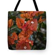 Sundown Orange Tote Bag