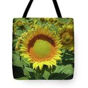 Sunflower And Honeybee July Two K O Nine Tote Bag
