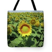 Sunflower And Honeybees July Two K O Nine  II Tote Bag