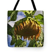 Sunflower At Fall Tote Bag