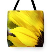 Sunflower Closeup In Landscape Tote Bag