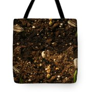 Sunflower Seedling Growth Sequence Tote Bag