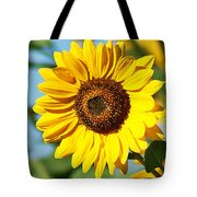 Sunflower Small File Tote Bag