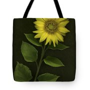 Sunflower With Rocks Tote Bag