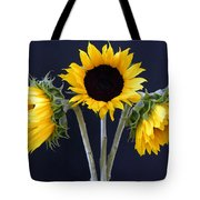 Sunflowers Three Tote Bag
