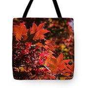 Sunlight Autumn Leaves Tote Bag