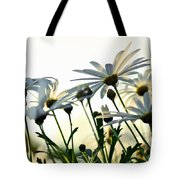 Sunlight Behind The Daisies Tote Bag