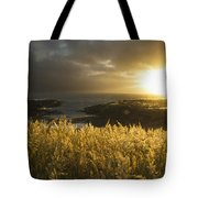 Sunlight Glowing At Sunset And Tote Bag