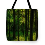 Sunlight In Forest Tote Bag