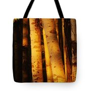Sunlight On Aspen Trees, Twin Falls Tote Bag