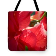 Sunlight On Red Hibiscus Tote Bag