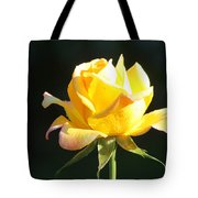 Sunlight On Yellow Rose Tote Bag