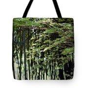 Sunlit Bamboo Tote Bag