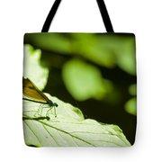 Sunlit Dragonfly Tote Bag
