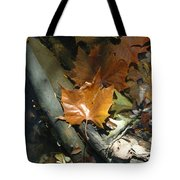 Sunning In The Stream Tote Bag