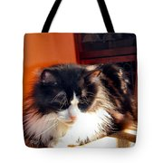 Sunning Is  Good  Tote Bag