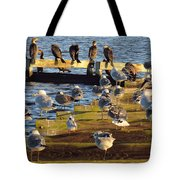 Sunnning Tote Bag
