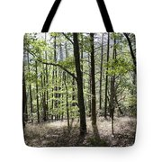 Sunny Afternoon Tote Bag