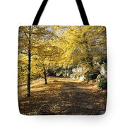 Sunny Day In The Autumn Park Tote Bag
