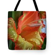 Sunny Glads Tote Bag by Susan Herber
