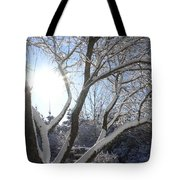 Sunny Snow Day 1 Tote Bag