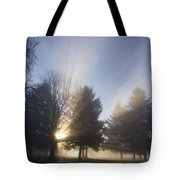 Sunray Through Trees And Fog Tote Bag