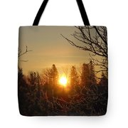 Sunrise In The Trees Tote Bag