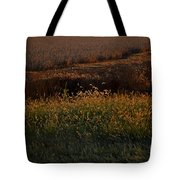 Sunrise On Wild Grasses II Tote Bag