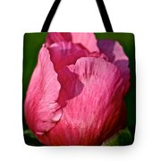 Sunrise Pink Tote Bag