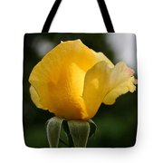 Sunrise Rosebud Tote Bag